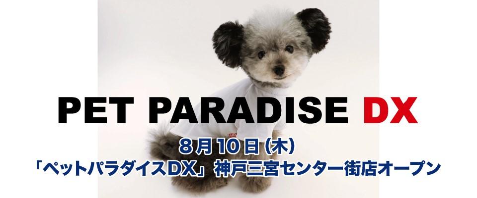 8/10 神戸三宮センター街PPDXオープン
