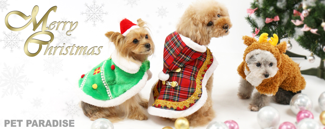 ペットパラダイスのクリスマス
